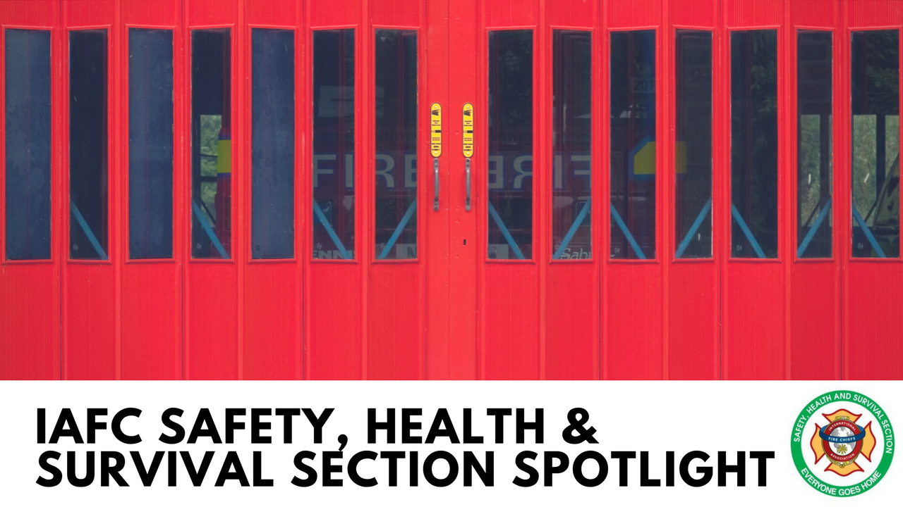 Spotlight on the Safety Health and Survival Section