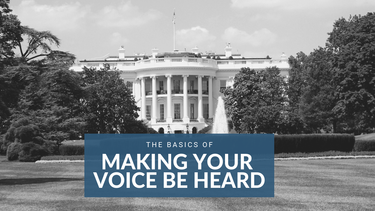 The Basics of Making Your Voice Heard