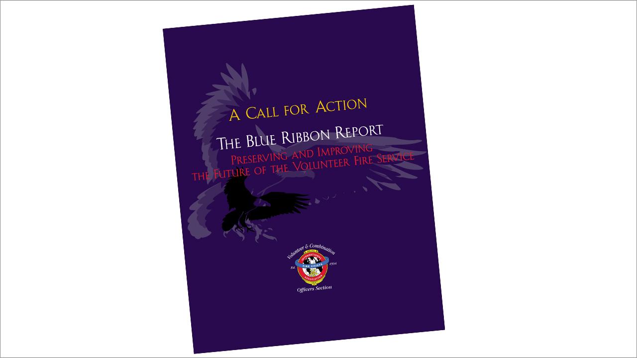 VCOS Blue Ribbon Report