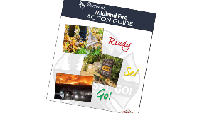 wild_600x312_rsgactionguidecover