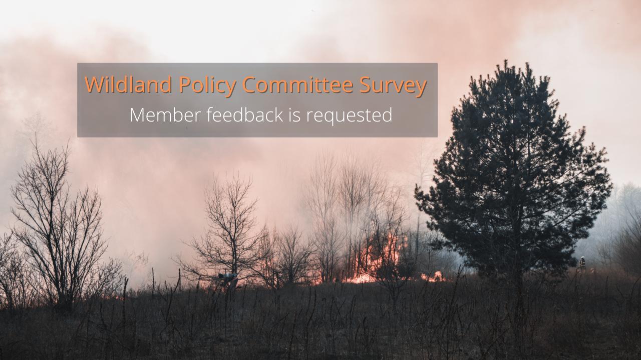 WPC_survey_1280x720