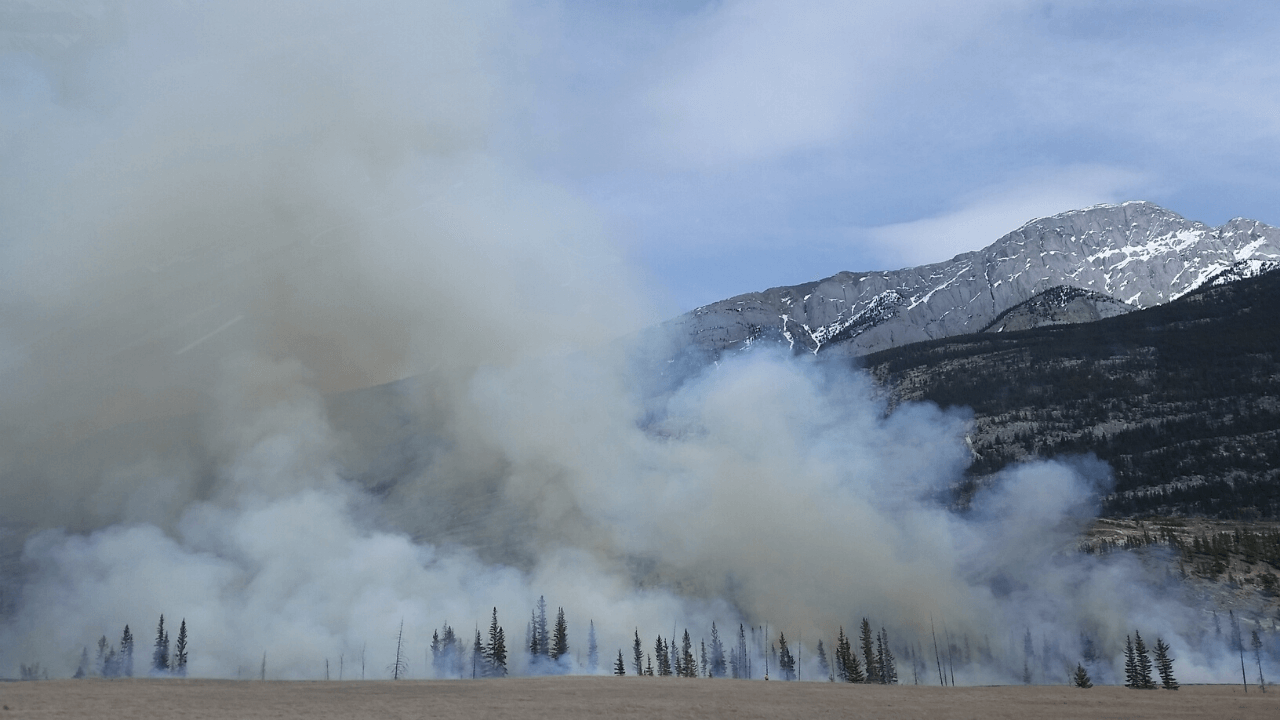 Preparedness is Key as Wildland Fire Hits Closer to Home